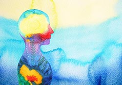 NScience | Mental Health Seminars